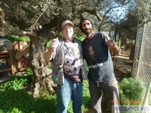 Norman and Nikos